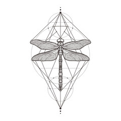 Black dragonfly Aeschna Viridls, isolated on white background. Tattoo sketch. Mystical symbols and insects. Alchemy, religion, occultism, spirituality, coloring books. Hand-drawn vector illustration.