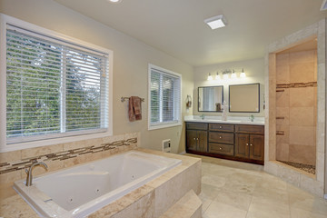 Master bathroom Design With Luxury tub and walk-in shower