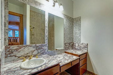 Grey bathroom interior in a luxurious castle