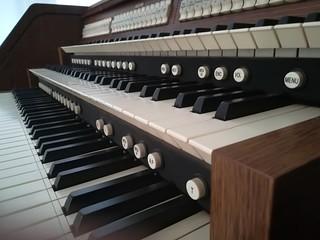 Organum keyboards close up