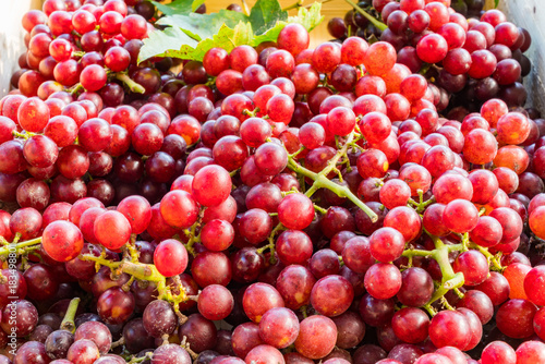 Fototapete Red seedless grapes with leaves