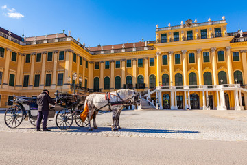 Horse coach and a coachman in front of the Schonbrunn Palace