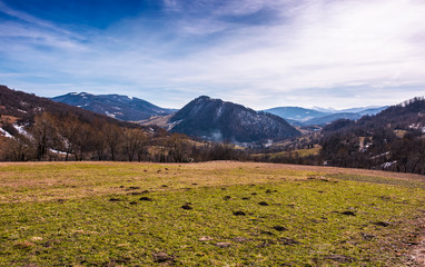 grassy field on an slope in springtime. lovely countryside landscape in Carpathian mountainous area