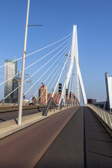 Erasmus Bridge in Rotterdam, Netherlands