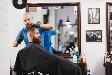 Male professional hairdresser serving client by scissors. Ginger handsome brutal stylish young man with thick big beard, short hair getting trendy haircut in black cape. Light white barber shop room.