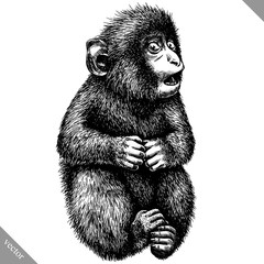 black and white engrave isolated monkey vector illustration