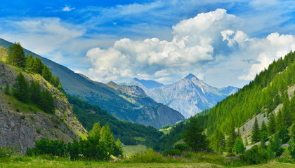 View of summer mountains Wall mural