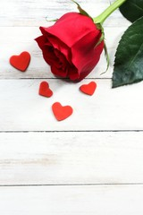 Single Red Rose on white wooden background for Valentines day, selective focus