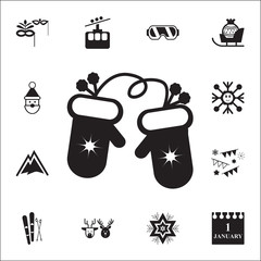 Winter mittens with snowflake elemenent icon. Set of elements Christmas Holiday or New Year icons. Winter time premium quality graphic design collection icons for websites