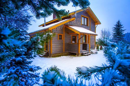 Private house surrounded by trees. The cottage is surrounded by pine and fir trees. Private house in winter.