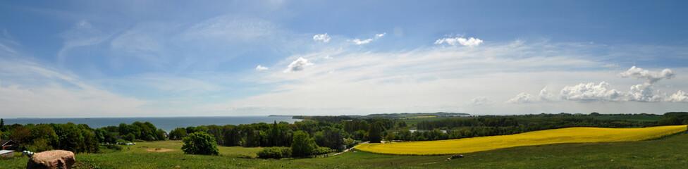 Panorama Rapsfeld in Göhren auf Rügen, Halbinsel Mönchgut