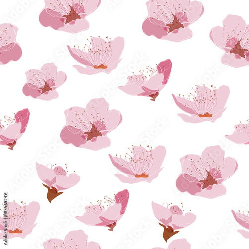 Cherry blossom pattern vector. Pink floral background for greeting ...