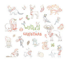 Woodland Christmas set.