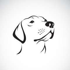 Vector of a dog head(Labrador Retriever) on white background, Pet.