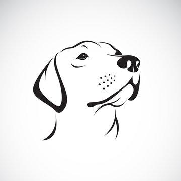 Vector of a dog head(Labrador Retriever) on white background, Pet.