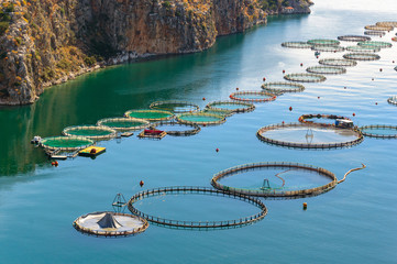 Fish farming in the sea, Greece