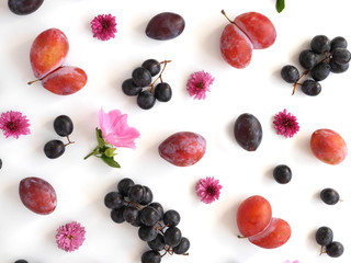 A composition of fruits on a white background. Food pattern made from fresh fruits. Top view, flat design. Collage of plum, grapes, apples, flowers, nectarines.