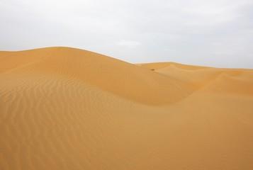 Beautiful sand dunes in Rajasthan, India