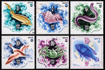 Post stamp USSR. Sea inhabitants