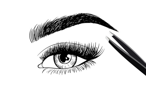 Eyes with eyebrow and long eyelashes and tweezers to build. Logo for eyebrow mater, eyelash extension eyebrow. Vector illustration.