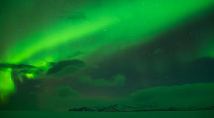 Northern lights (Aurora borealis) at the sky