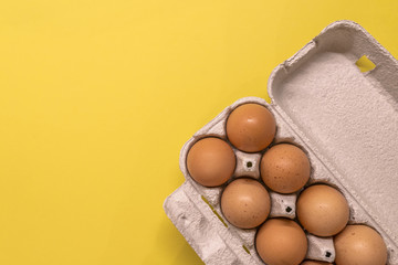 Overhead view of brown chicken eggs in an open egg carton isolated on yellow.