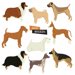 Dog collection Geometric style Vector set of 9 dog breeds Isolated objects