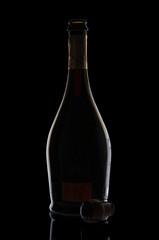 Empty champagne bottle on black background