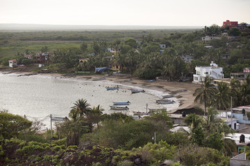 Houses line a small sandy beach bay with a few fishiing boats.