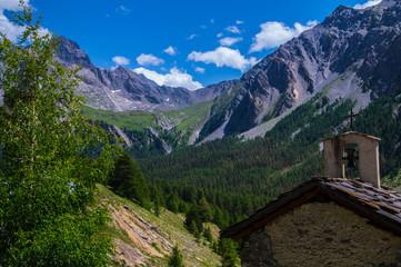 bois noir ceillac queyras in hautes alpes in france