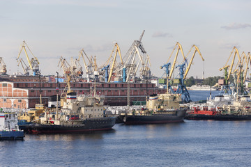 Cranes at Harbor, Saint Petersburg, Russia