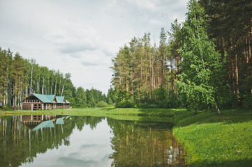 Beautiful Russian birch thicket emblazoned on the lake 9292.