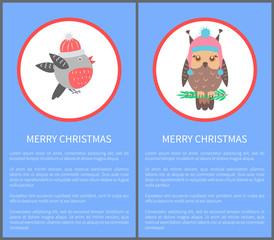 Merry Christmas 60s or 70s Birds Postcard Congrats