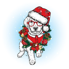 A beautiful puppy in a Christmas wreath and hat. Vector illustration. A pedigree dog in clothes and accessories. New Year's and Christmas.
