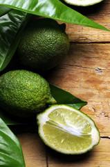 Citrus aurantiifolia कागजी नींबू Frutas 墨西哥萊檬 de lima Lime Echte Limette Limetta ليمون بلدي
