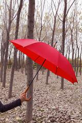 şemsiye tutmak