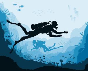 Divers and reef Underwater wildlife