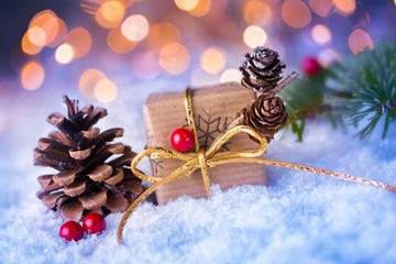 Cute christmas gift in snow landscape
