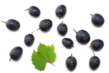 blue grapes berries with leaves isolated on white. top view