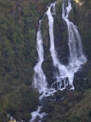 El Franz Josef es un glaciar de 12 km de largo ubicado en Parque nacional Westland en la costa oeste de la Isla Sur de Nueva Zelanda.