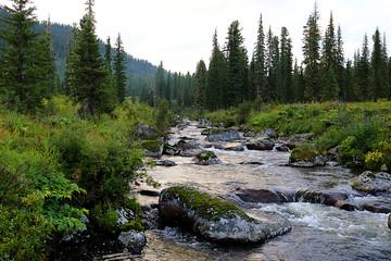 River Buyba in South Siberia
