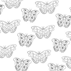 seamless pattern decoration natural butterfly fly insect vector illustration
