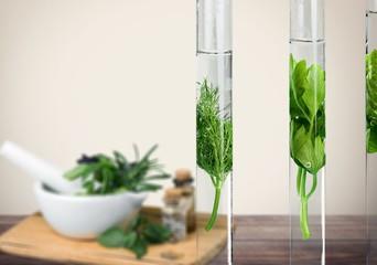 Plant in tube.