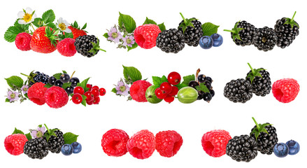 Berries collection isolated on white background