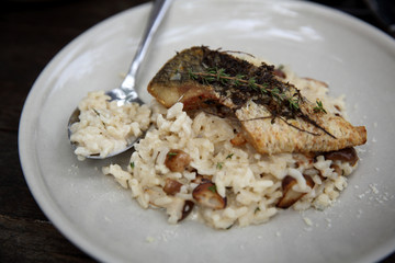 risotto with sea bass fillet steak on wood background , italian food
