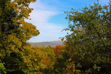Nature in Dunabogdany Hungary at autumn sunny day.. View.