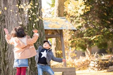 銀杏の葉を投げて遊ぶ子供