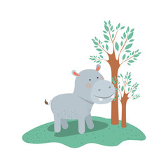 hippopotamus cartoon in forest next to the trees in colorful silhouette vector illustration