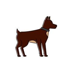 dog animal mammal pet friendly vector illustration
