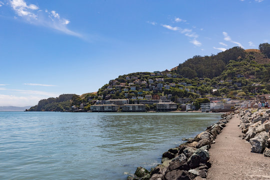 The San Francisco Bay and hill in Sausalito, California.